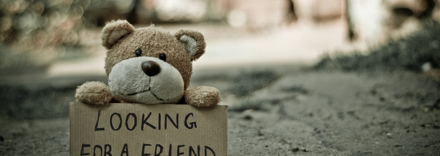 "Teddy Bear With Sign ""Looking For A Friend"""